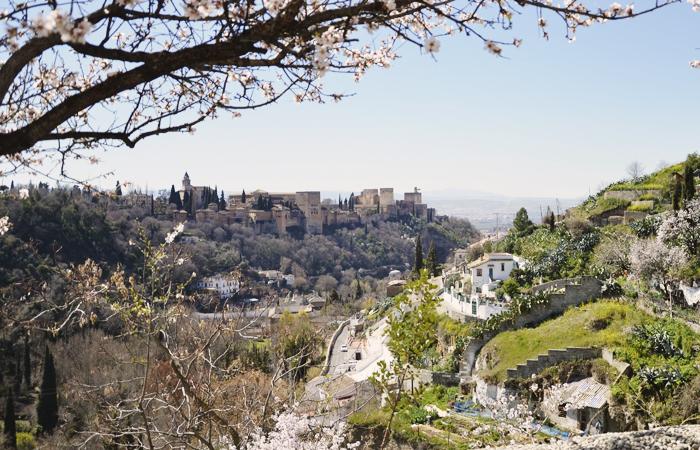 LUOLA_Granada_01